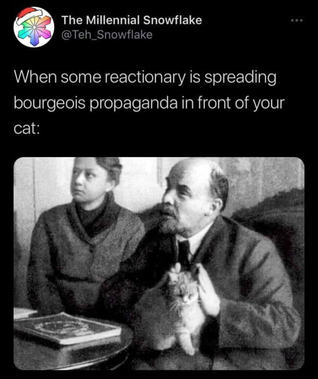Lenin cat memes