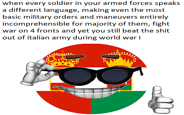 The performance of the Austro-hungarian army in a nutshell
